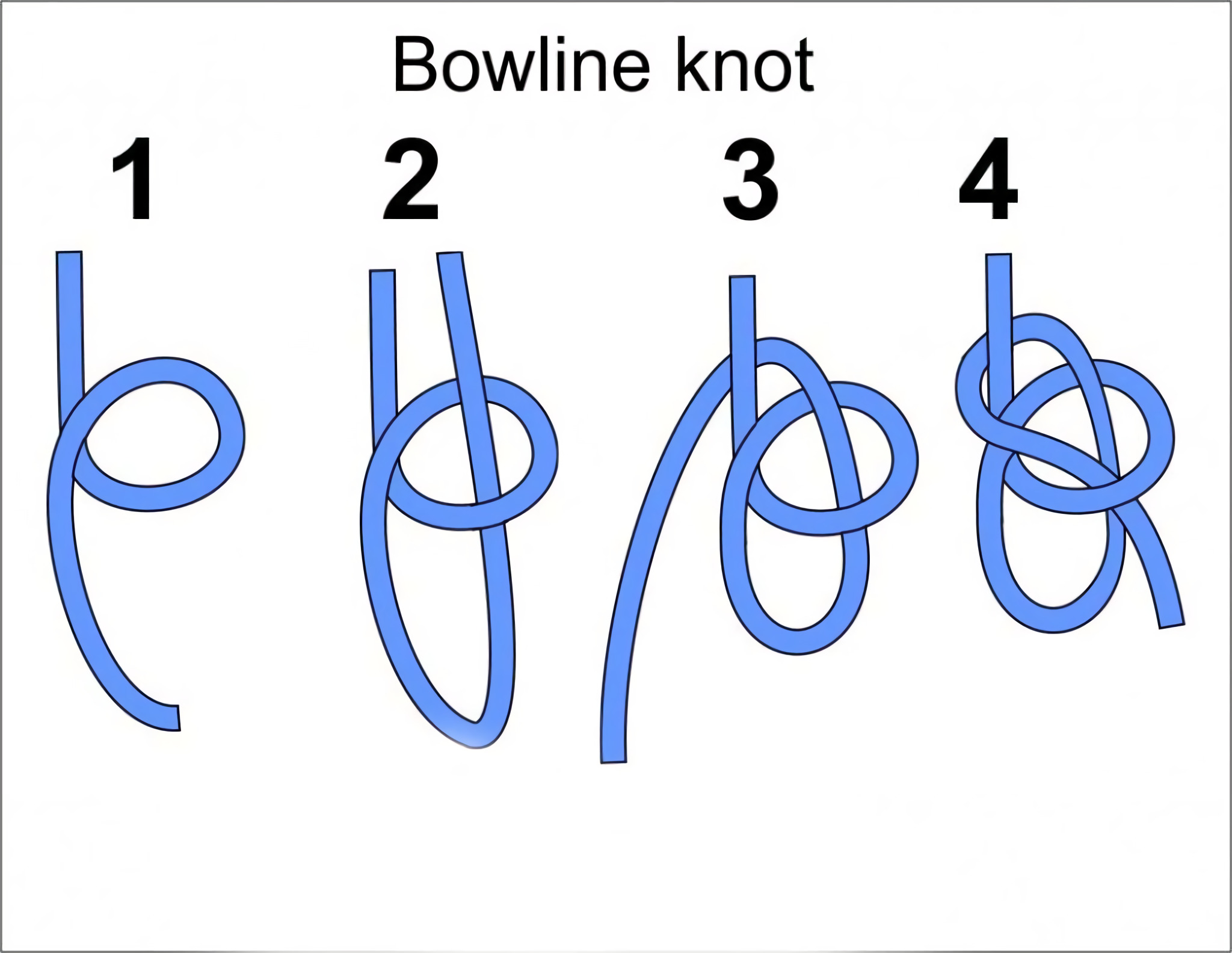 this is what a bowline knot looks like